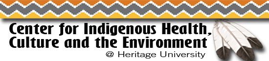 Center for indigenous health, culture and environment logo
