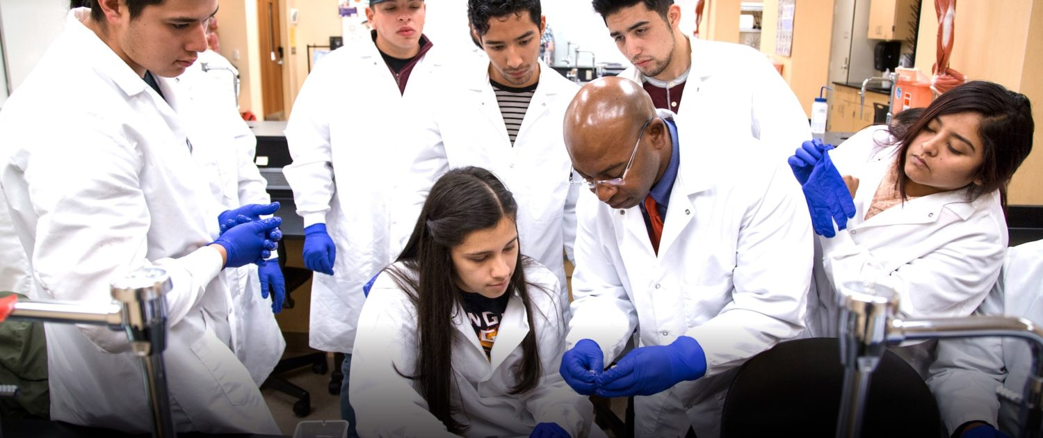 Medical lab students working with professor hands on